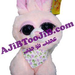 خرگوش های چشم جذاب