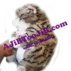 Doll fat cute cat musicall