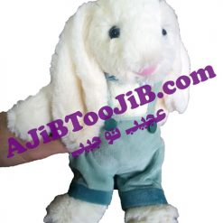 خرگوش های دختر و پسرجلی کت