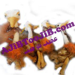 شترمرغ طبیعی صدادار (کیفیت عالی)