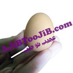 تخم مرغ شوخی نشکن