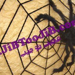 عنکبوت پشمی هالووین