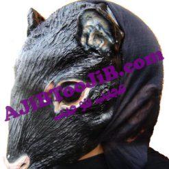 ماسک موش کور