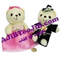 خرس های جنتلمن عروس و داماد
