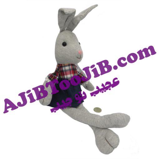 خرگوش های پا دراز شازده و بانو