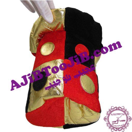Multicolored clown hat