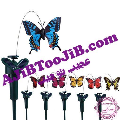 Romantic solar butterfly