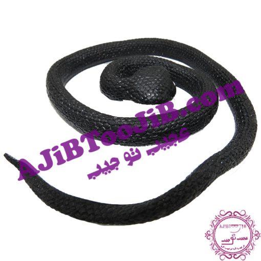 Big jelly snake